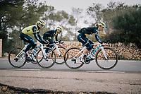 Abi Van Twisk (UK/Trek-Segafredo), Anna Plichta (POL/Trek-Segafredo) & Trixi Worrack (DEU/Trek-Segafredo)<br /> <br /> Team Trek-Segafredo women's team<br /> training camp<br /> Mallorca, january 2019<br /> <br /> ©kramon