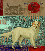 Isabella, REALISTIC ANIMALS, REALISTISCHE TIERE, ANIMALES REALISTICOS, paintings+++++,ITKE066171-S-LC,#a#, EVERYDAY ,dogs ,collage