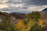 Idaho, South Central, Mackay. A  distant view of the Lost River Range from the White Knob Mountains in autumn.
