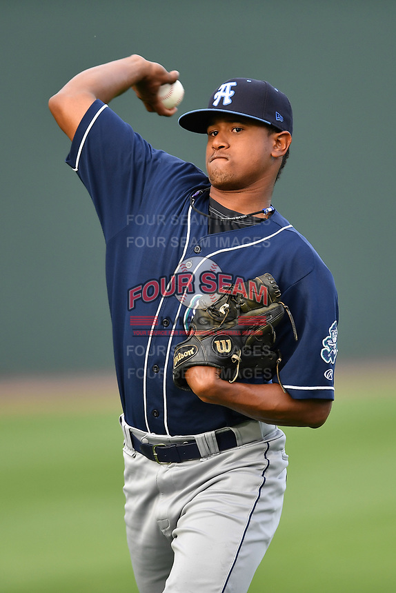 Starting pitcher Erick Julio (29) of Asheville Tourists warms up before a game against the Greenville Drive on Wednesday, May 3, 2017, at Fluor Field at the West End in Greenville, South Carolina. Greenville won, 8-0. (Tom Priddy/Four Seam Images)