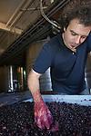 Alejandro Vigil is the head winekaer at Bodega Catena Zapata and head winemaker for the Catena Family wineries in Mendoza, Argentina.