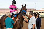 DEL MAR, CA  AUGUST 17:#7 Fighting Mad, ridden by Joseph Talamo, returns to the connections after winning the Torrey Pines Stakes (Grade lll) on August 17, 2019 at Del Mar Thoroughbred Club in Del Mar, CA. Photo by Casey Phillips/Eclipse Sportswire/CSM)