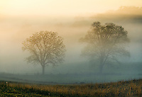 Misty battlefield, Gettysburg National Military Park, Pennsylvania, USA