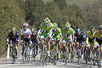 The peloton with Cannondale team on the front on the 5th sector of strade near Murlo during the 2014 Strade Bianche race over the white dusty gravel roads of Tuscany, Italy. 8th March 2014.<br /> Picture: Eoin Clarke www.newsfile.ie