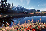 Mount Rainier National Park, reflecting tarn, Mount Rainier, Washington State, Pacific Northwest, U.S.A.,.