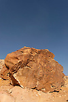 Israel, the Negev desert. Petrified trees in the Large Crater