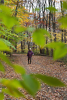 Hiker on the Franklin Parker Trail, Schiff Preserve, Mendham, New Jersey