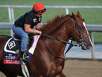 Dullahan, trained by Dale Romans, exercises in preparation for the upcoming Breeders Cup at Santa Anita Park on November 1, 2012.
