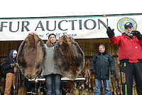 The Anchorage Fur Rendezvous winter festival got its name from the time trappers would bring their furs into town for sale at auction, a tradition that continues to this day.