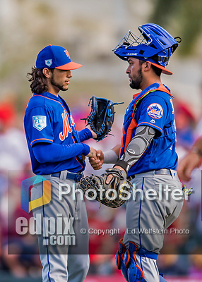 28 February 2019: New York Mets pitcher Josh Torres gets congratulated by catcher Ali Sanchez after closing a Spring Training game against the St. Louis Cardinals at Roger Dean Stadium in Jupiter, Florida. The Mets defeated the Cardinals 3-2 in Grapefruit League play. Mandatory Credit: Ed Wolfstein Photo *** RAW (NEF) Image File Available ***