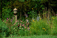 Camoflauge: Three wild turkeys, Meleagris gallopavo, disguised as  wildflowers near meadow birdhouse