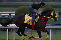 Trinninberg galloping at Santa Anita Park in Arcadia California