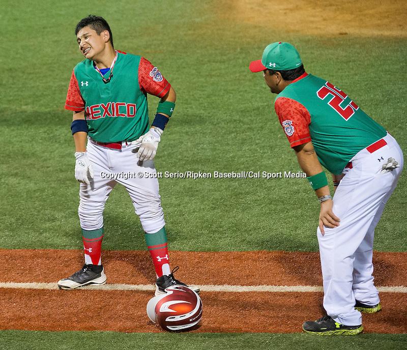 August 14, 2014: Scott Serio/Ripken Baseball/CSM