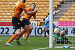 Wolverhampton Wanderers v Peterborough United<br /> 5.4.2014<br /> Sky Bet League One<br /> Picture Shaun Flannery/Trevor Smith Photography<br /> Dave Edwards beats Peterborough goal keeper, Bobby Olejnik, to score Wolves 2nd goal.