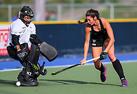 Maddy Williamson (keeper) and Amy Robinson. International Hockey Warmup game, Blacksticks women v Chile.Auckland Grammar Hockey Turf, Auckland, New Zealand. Thursday 13 December 2018. Photo: Simon Watts/Hockey NZ