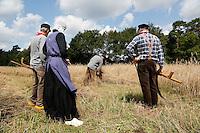 Leusden -  De Stichting Behoud Oude Werktuigen organiseert de jaarlijkse Oogstdag op landgoed Den Treek. Rogge maaien met een zicht