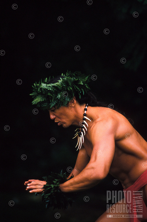 Hawaiian man chanting while dancing hula