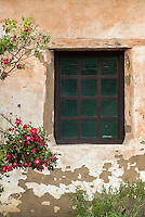 Carmel Mission window and Bougainvillea