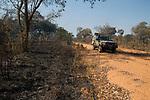 Panthera research vehicle and burned miombo woodland, Kafue National Park, Zambia