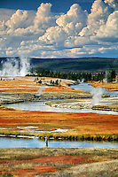 Fly fisherman on Firehole River with fall color. Yellowstone National Park, Wyoming