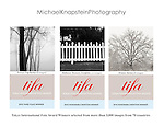 "Michael Knapstein received 26 awards in the Tokyo International Foto Awards (TIFA) including Third Place for the ""Forest Fog"" series and Honorable Mention for the ""Midwest Memoir"" portfolio."