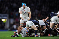 James Haskell of England appeals to the referee