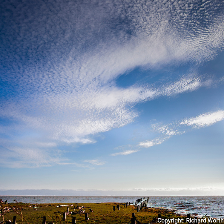 Cirrocumulus clouds fill the sky, a mackerel sky, above San Francisco Bay, above pilings tracing the path of a long abandoned pier.