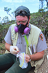 Dr Judd Howell Processing Captured Deer Mouse