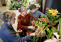 NWA Democrat-Gazette/DAVID GOTTSCHALK Beth Martin (from left), Jean Rogers and Joy Prout, all with the Orchid Society of Greater Kansas City, arrange Friday, March 2, 2018, their display of orchids in the event center at the 8th annual Orchid Show and Sale at the Botanical Garden of the Ozarks in Fayetteville. Co-sponsored by the Orchid Society of the Ozarks and the Botanical Garden of the Ozarks, The indoor show began Friday and runs through Sunday featuring displays from different orchid societies, care mini-classes, a plant sale and a competition.