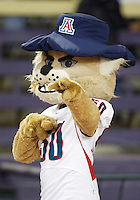 Oct 10, 2009:   Arizona Wildcats mascot Wilbur entertained the Arizona fans in attendance against Washington.  Washington defeated Arizona 36-33 at Husky Stadium in Seattle, Washington..
