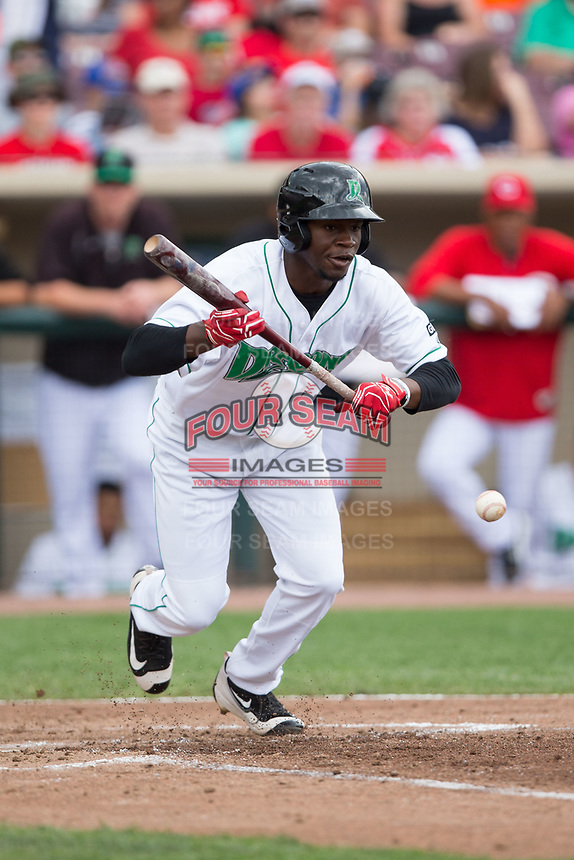 Michael Beltre (34) of the Dayton Dragons pushes a bunt down the first base ine during the game against the West Michigan Whitecaps at Fifth Third Field on May 29, 2017 in Dayton, Ohio.  The Dragons defeated the Whitecaps 4-2.  (Brian Westerholt/Four Seam Images)
