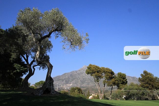 on Day 1 of the 2012 Open de Andalucia Costa del Sol at Aloha Golf Club, Marbella, Spain...(Photo Jenny Matthews/www.golffile.ie)