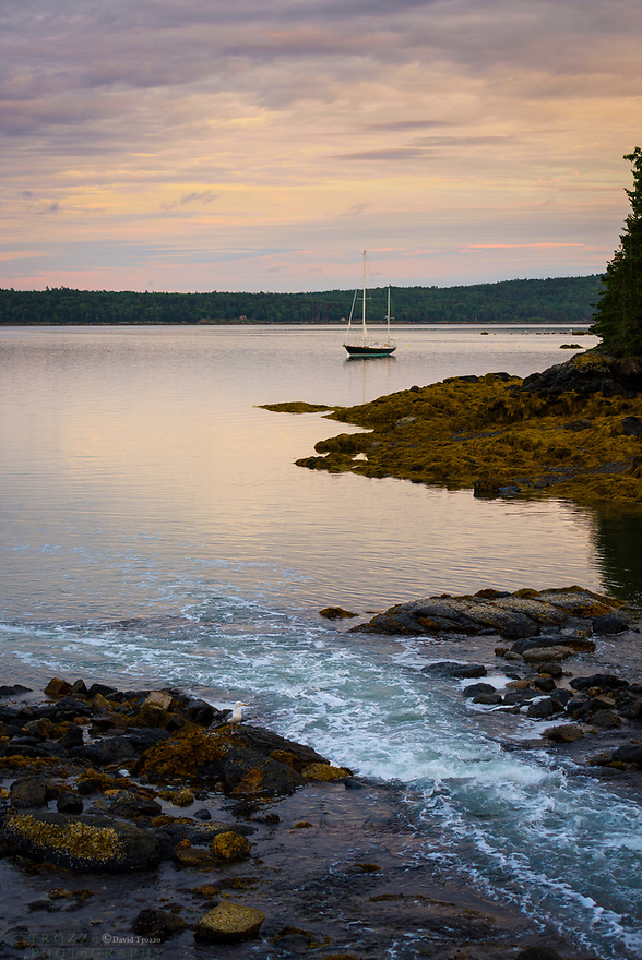 The tide changes along the rough coastline of Blue Hill, Maine.