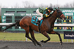 03-14-20 Jeff Ruby Steaks S. and Undercard Turfway