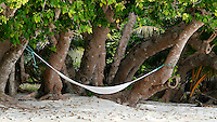 Hammock on the beach in Tonga