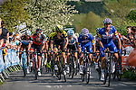 Riders climb Le redoute during the 2018 Liège - Bastogne - Liège (UCI WorldTour), Belgium, 22 April 2018, Photo by Thomas van Bracht / PelotonPhotos.com