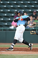 Hickory Crawdads first baseman Curtis Terry (29) swings at a pitch during the game with the Augusta GreenJackets at L.P. Frans Stadium on April 24, 2019 in Hickory, North Carolina.  The Crawdads defeated the GreenJackets 5-4. (Tracy Proffitt/Four Seam Images)