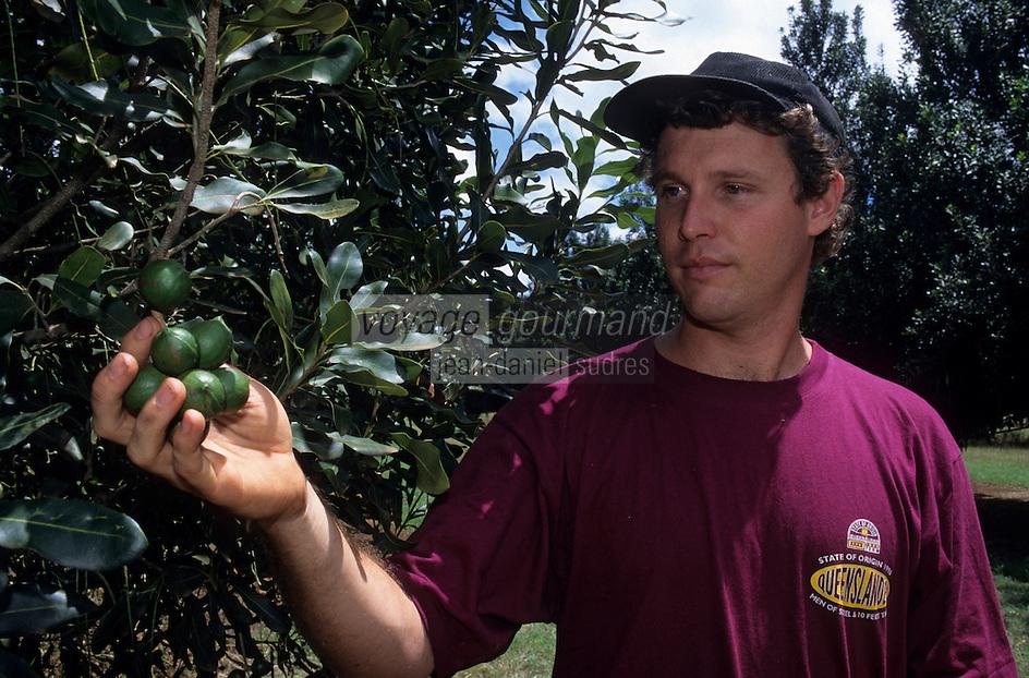 Océanie/Australie/Queensland/Env de Mareeba : Brett Shearer producteur de noix de macadam