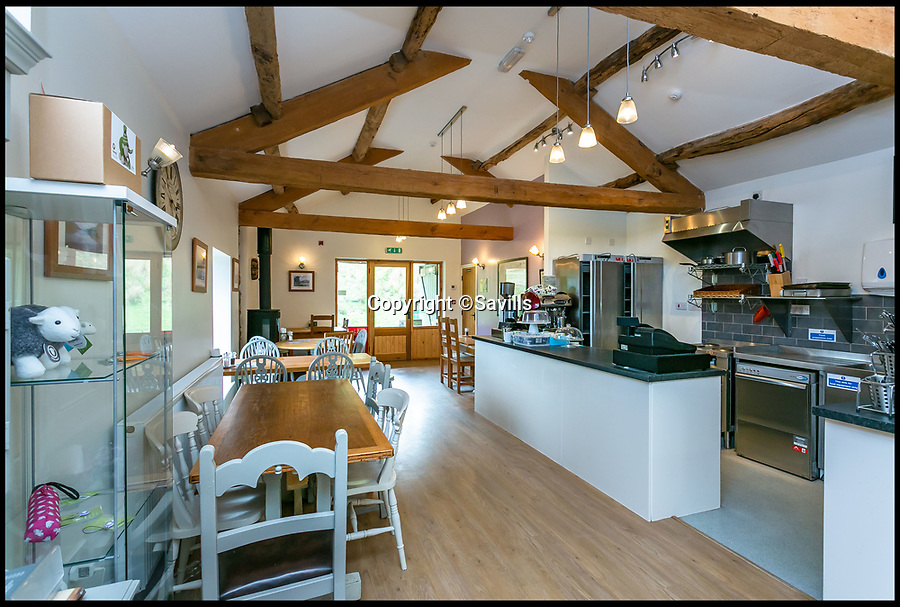BNPS.co.uk (01202)558833<br /> Pic:    Savills/BNPS<br /> <br /> Lowther barn interior.<br /> <br /> A country estate that has its own farm, tea rooms and glamping business in the heart of the Lake District has gone on market for those looking to escape the rat race.<br /> <br /> Backside Farm sits on the banks of Ullswater - the second largest lake in the Cumbrian National Park - and has one mile of water access as well as stunning views of the mountains. <br /> <br /> The outgoing owners have been on the 195 acre estate for over a decade and in that time they have renovated the large five bedroom farmhouse.<br /> <br /> They also set up the tea rooms and two holiday rental cabins and have established them as a business.