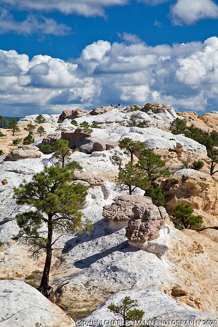 El Morro National Monument located between the towns of Grants and Zuni near El Malpais National Monument features towering cliffs, hiking trails, historic graffiti and the ruins of the ancient pueblo home to the Zuni tribe.