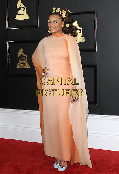 12 February 2017 - Los Angeles, California - Andra Day. 59th Annual GRAMMY Awards held at the Staples Center. <br /> CAP/ADM<br /> &copy;ADM/Capital Pictures