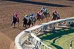 November 1, 2019 : on Breeders' Cup Championship Friday at Santa Anita Park in Arcadia, California on November 1, 2019. John Voorhees/Eclipse Sportswire/Breeders' Cup/CSM