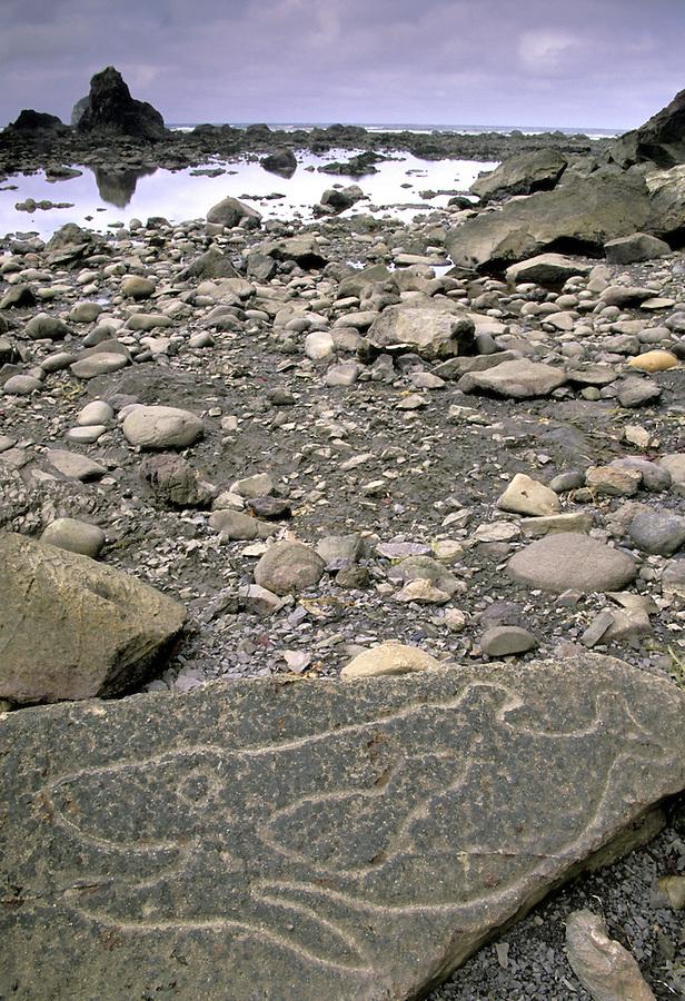Petroglyphs at Wedding Rocks, Pacific Ocean, Olympic National Park, Washington