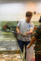 Fischh&auml;ndler in Kowloon, Hongkong, China<br /> Fish dealer in Kowloon, Hongkong, China