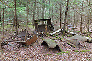 Abandoned car in forest in Franconia, New Hampshire USA during the spring months