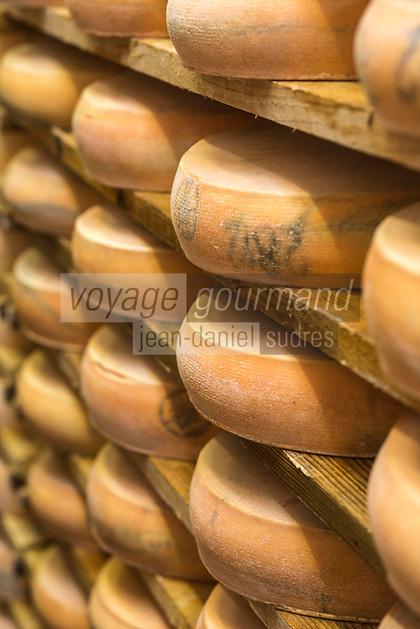 Europe/France/Franche Comté/39 /Jura/Morbier: Affinage du fromage AOP Morbier à la fruitière de Morbier //  France, Jura, Morbier:  making and control of Morbier cheese in an Haut Doubs Dairy
