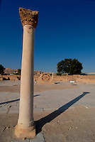 Gerico / Israele.Entrata degli scavi archeologici di Hisham..Le prestigiose rovine risalgono al 743 dopo Cristo..Foto Livio Senigalliesi..Jericho / Israel.Hisham's Palace (Arabic: Khirbat al-Mafjar) is the archaeological remains of an Umayyad winter palace located five km north of Jericho in the West Bank..The palace was built on the northern outskirts of Jericho, then an imperial domain, in 743-744 CE by Al-Walid ibn Yazid during the caliphate of his predecessor Hisham ibn Abd al-Malik,who ruled the Umayyad empire from 723 until his death in 743..Photo Livio Senigalliesi
