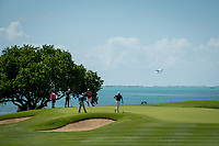 players on the green during the 1st round of the AfrAsia Bank Mauritius Open, Four Seasons Golf Club Mauritius at Anahita, Beau Champ, Mauritius. 29/11/2018<br /> Picture: Golffile | Mark Sampson<br /> <br /> <br /> All photo usage must carry mandatory copyright credit (&copy; Golffile | Mark Sampson)