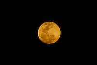 SAO PAULO, SP, 07.10.2014 -  LUA CHEIA - Lua cheia é vista da regiao da Serra Cantareira, na noite desta terça-feira, 07, na regiao norte da cidade de Sao Paulo . (Foto: Andre Hanni /Brazil Photo Press).