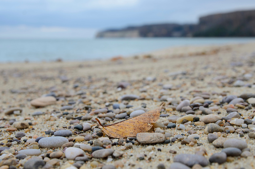 An aging leaf rests on the rocky shoreline of Miners Beach - Pictured Rocks National Lakeshore. Munising, MI